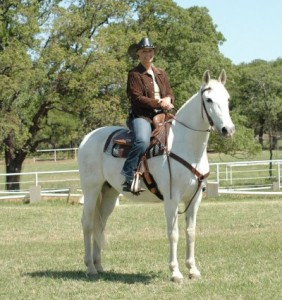 Andalusian Western Dressage