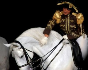 Joan in Lipizzaner Stallion Show